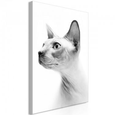 Obraz  Bezwłosy kot (1częściowy) pionowy