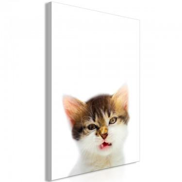 Obraz  Zirytowany kot (1częściowy) pionowy