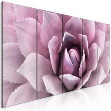 Obraz  Agawa (5częściowy) wąski różowy