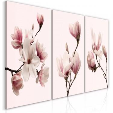 Obraz  Wiosenne magnolie (3częściowy)