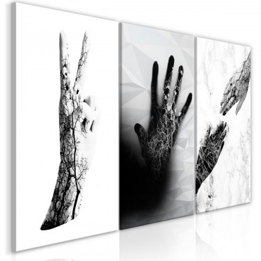 Obraz  Kobiece dłonie (3częściowy)