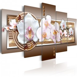 Obraz - Delikatność orchidei