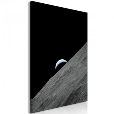 Obraz  Samotna planeta (1częściowy) pionowy