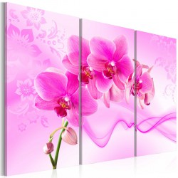 Obraz - Eteryczna orchidea - róż