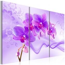 Obraz - Eteryczna orchidea - fiolet