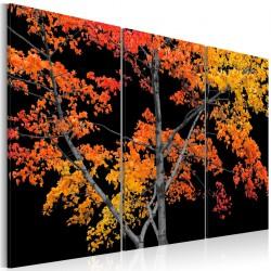 Obraz - Jesienna zaduma