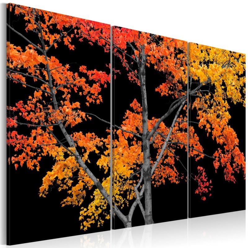 Obraz  Jesienna zaduma