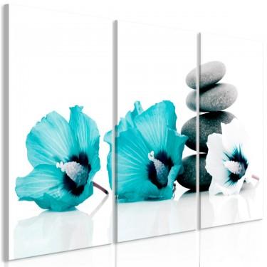 Obraz  Spokojne malwy (3częściowy) turkusowy