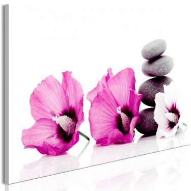 Obraz  Spokojne malwy (1częściowy) wąski różowy