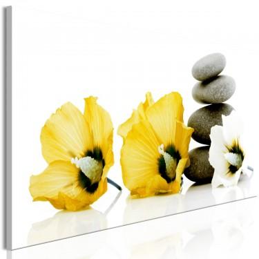 Obraz  Spokojne malwy (1częściowy) wąski żółty