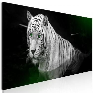 Obraz  Lśniący tygrys (1częściowy) zielony wąski