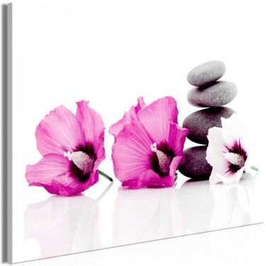 Obraz  Spokojne malwy (1częściowy) szeroki różowy
