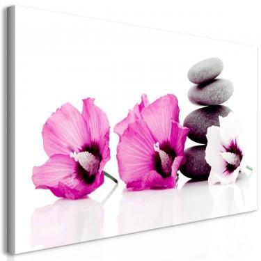Obraz  Spokojne malwy (1częściowy) różowy
