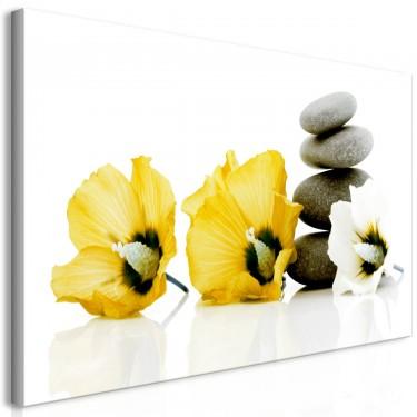 Obraz  Spokojne malwy (1częściowy) żółty