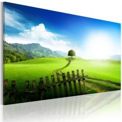 Obraz - Ścieżka przeznaczenia