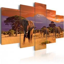 Obraz Afryka słonie