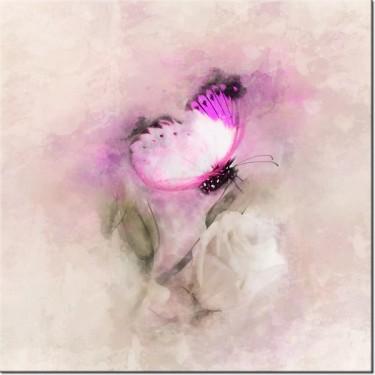 Obraz Motyl i róża