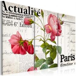 Obraz  Paris directeur