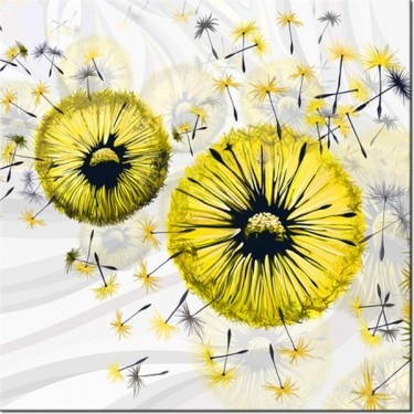 Obraz Żółte dmuchawce 4