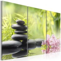 Obraz - Kompozycja Zen