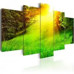 Obraz - Las i słońce