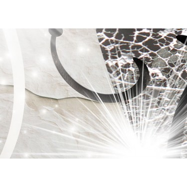 Obraz  Diamentowa gałązka