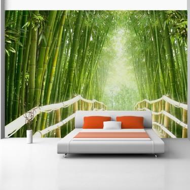 Fototapeta - Magiczny świat zieleni