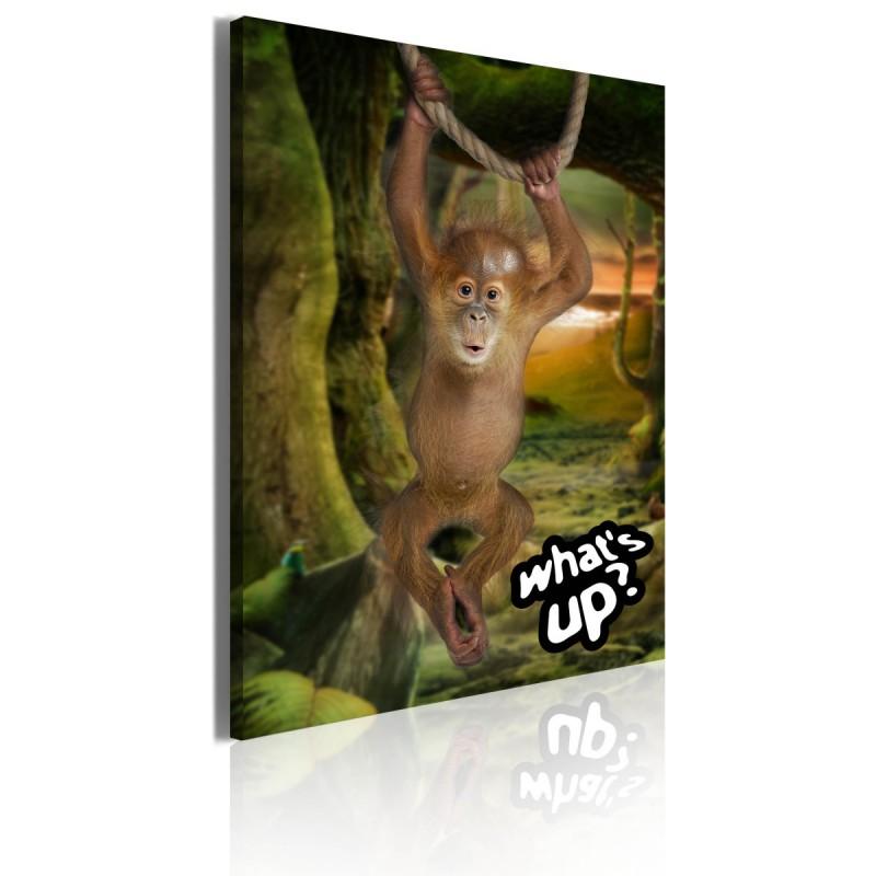 Obraz  Little monkey
