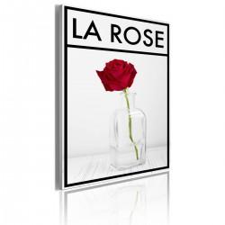 Obraz - La rose