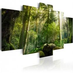 Obraz - Piękno lasu
