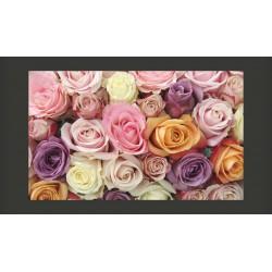 Fototapeta  Pastelowe róże