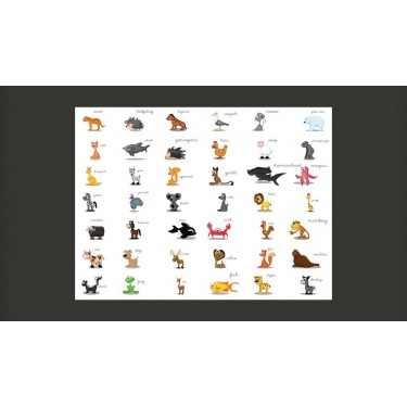 Fototapeta  Learning by playing (animals)