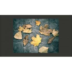 Fototapeta  jesień  melancholia