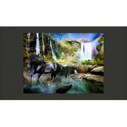 Fototapeta  Koń na tle błekitnego wodospadu