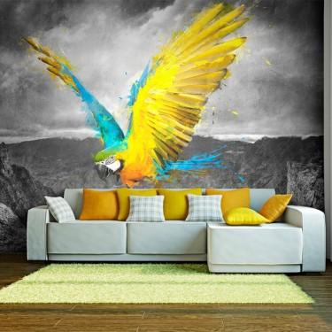 Fototapeta  Exotic parrot