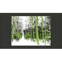 Fototapeta  drzewa  wiosna