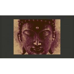 Fototapeta  Mądry Budda