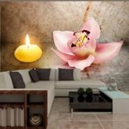 Fototapety i tapety ze storczykami, orchideą