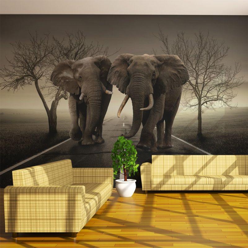 fototapeta abstrakcja miasto słoni